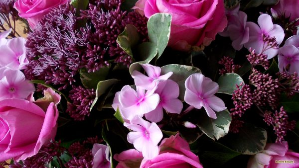 HD wallpaper pink flower bouquet