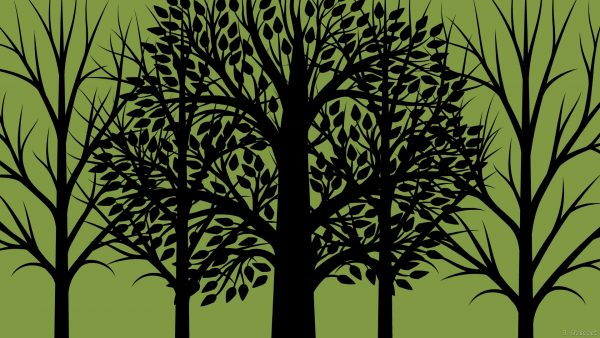 Olive colored wallpaper with trees
