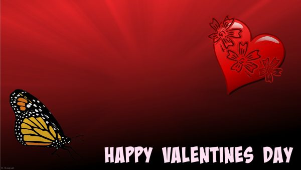 Happy Valentines Day with butterfly