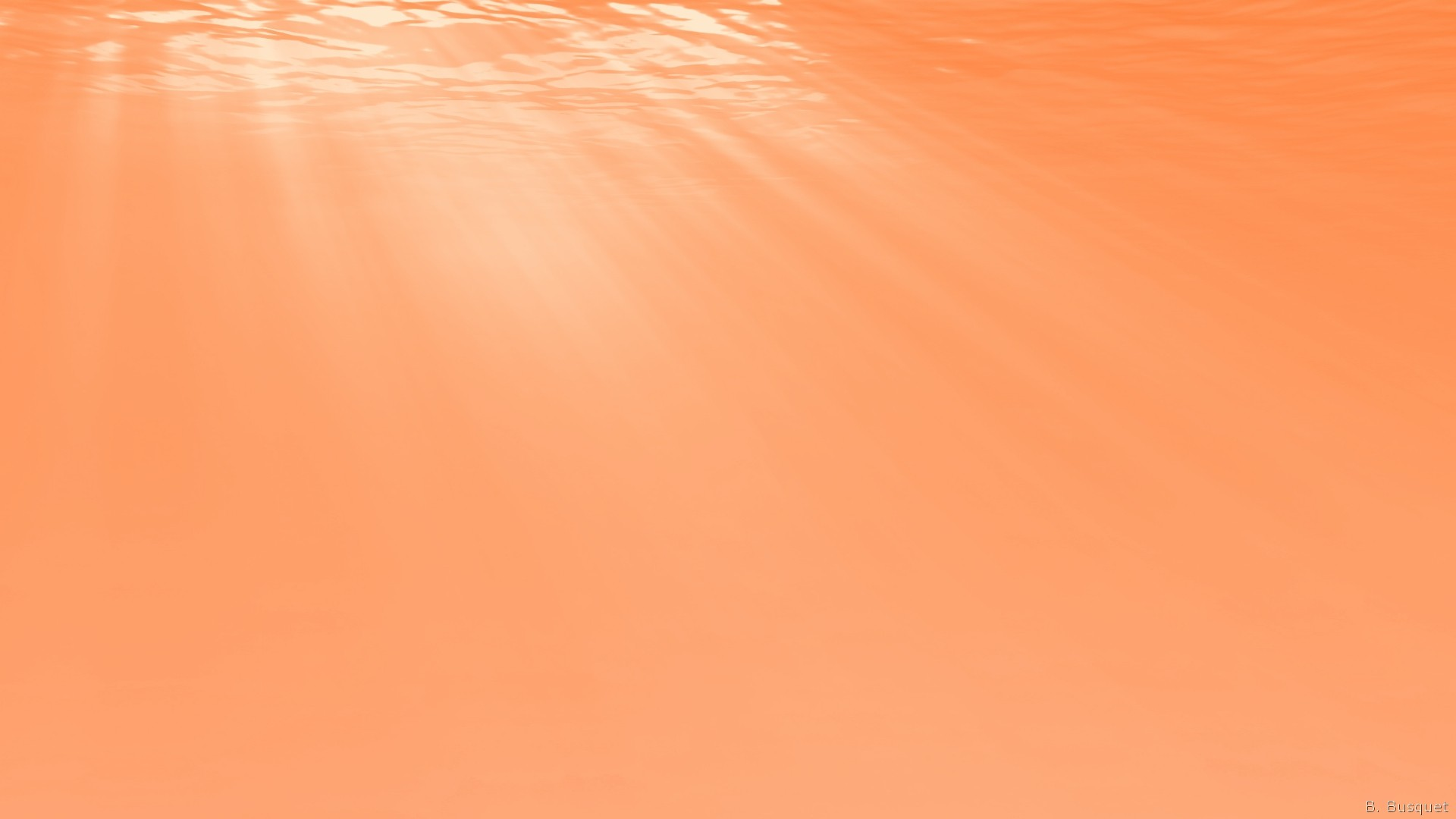 Orange Color Barbara S Hd Wallpapers