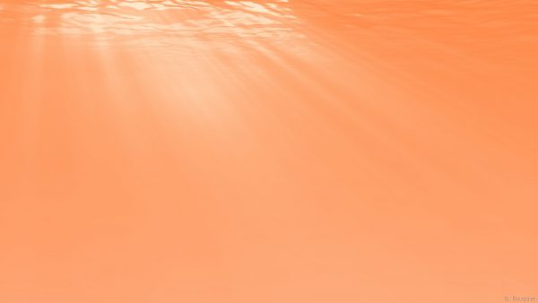 Orange wallpaper with light and water