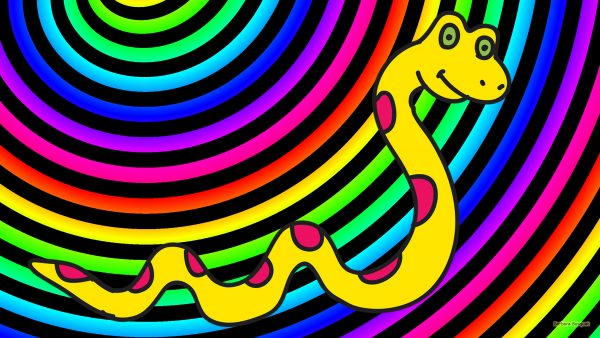 Rainbow spirals wallpaper with a yellow snake.