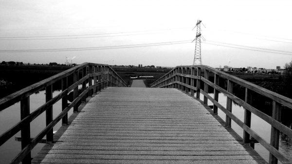 Bridge in the netherlands.