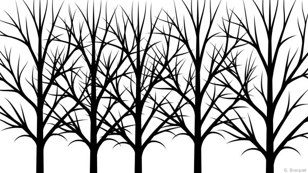 Trees on white background