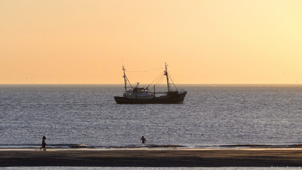 Fishing boat in the evening