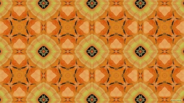 Pattern wallpaper with orange gladiolus