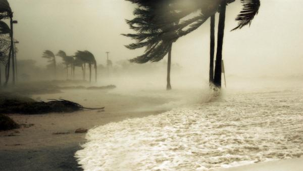 Florida hurricane wallpaper