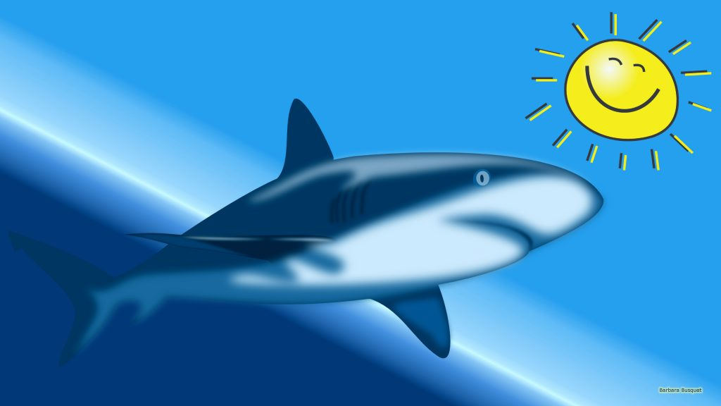 HD wallpaper with a shark and sun