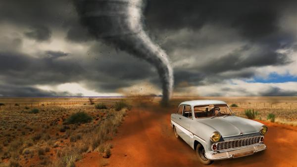 Tornado wallpaper monkey in car