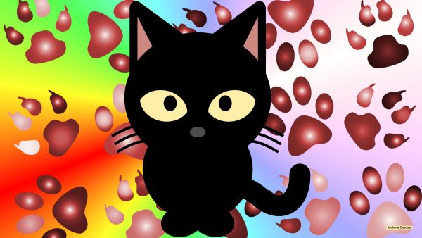 Colorful wallpaper with a black cat and paw prints.