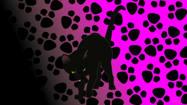 Black cat and paw prints on a purple background.