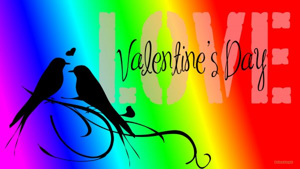 Colorful Valentines day wallpaper with birds