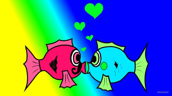Valentines wallpaper with two fish in love