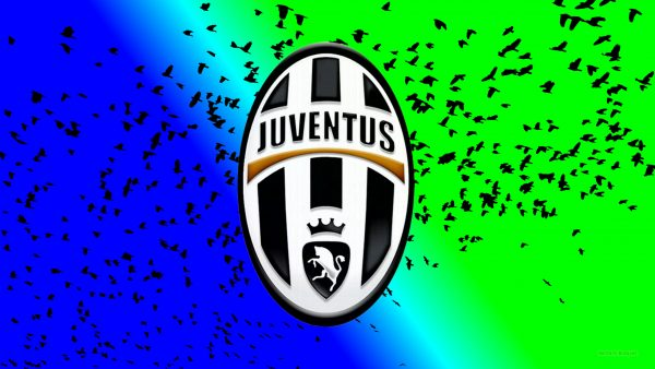 Juventus wallpaper with birds
