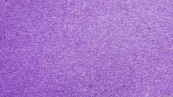Carpet on the floor
