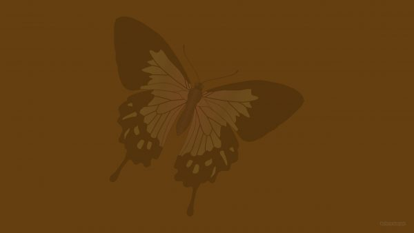 Brown wallpaper with a butterfly.