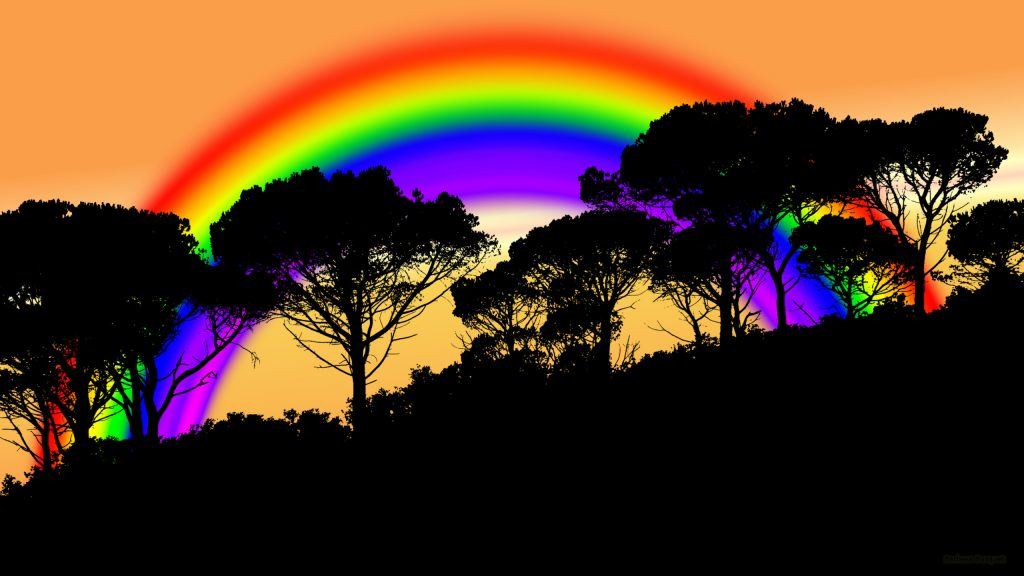Silhouette trees and rainbow