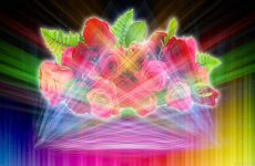 Abstract wallpaper with roses