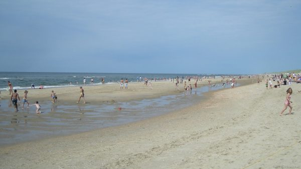 Dutch sand beach in summer