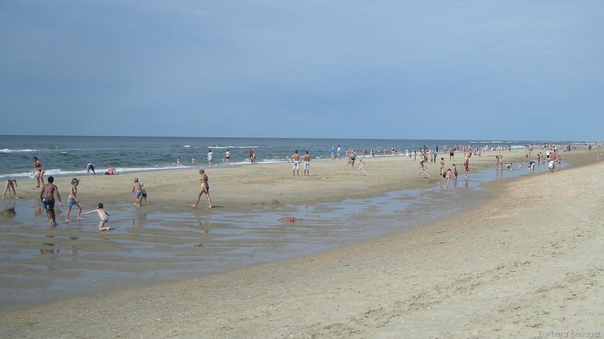 Beach netherlands Nude Photos 30