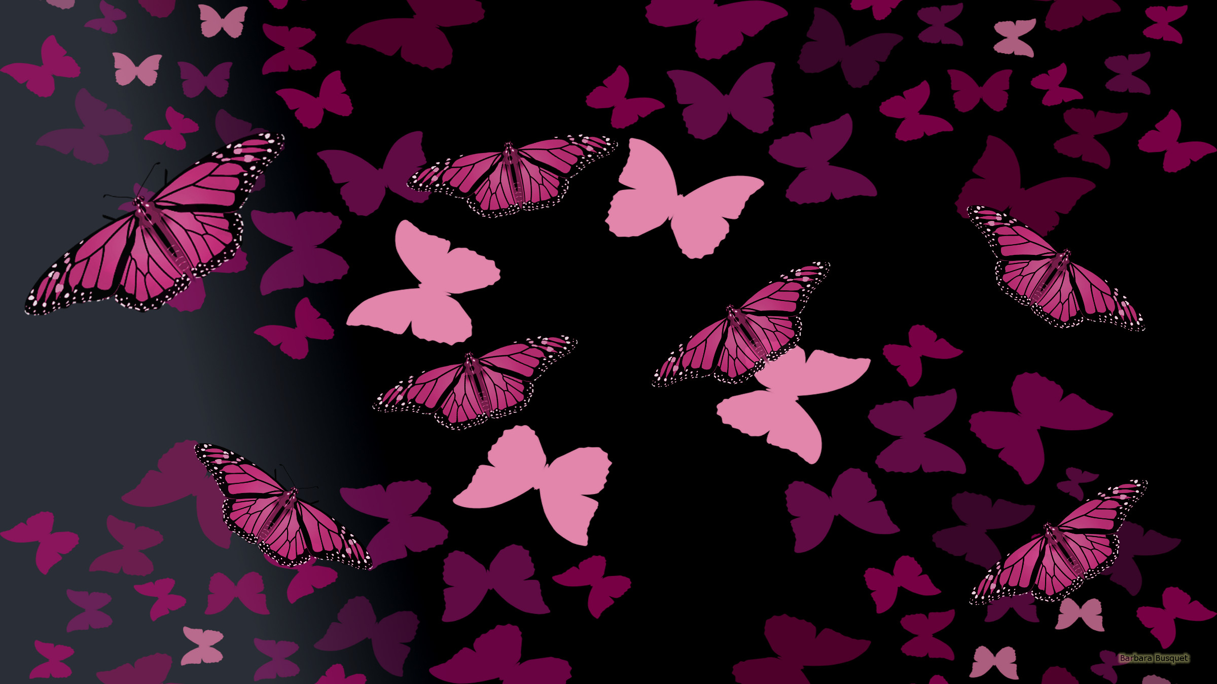 Black Wallpaper With Pink Butterflies Barbaras Hd Wallpapers