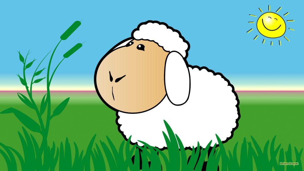 HD wallpaper sheep in meadows