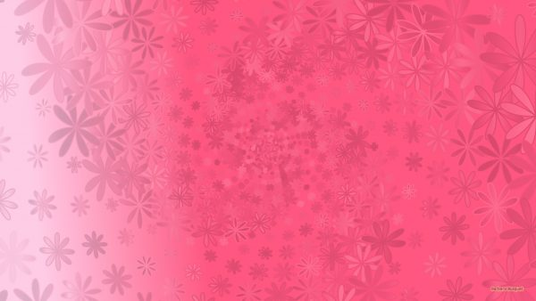 Pink pattern wallpaper with flowers.