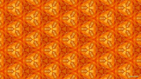 orange pattern wallpaper