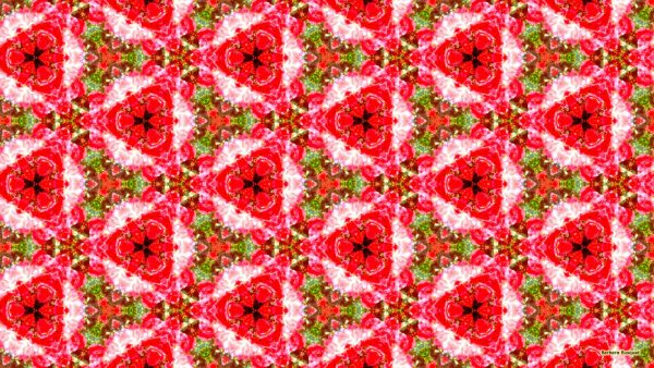 Abstract tile pattern wallpaper with flowers