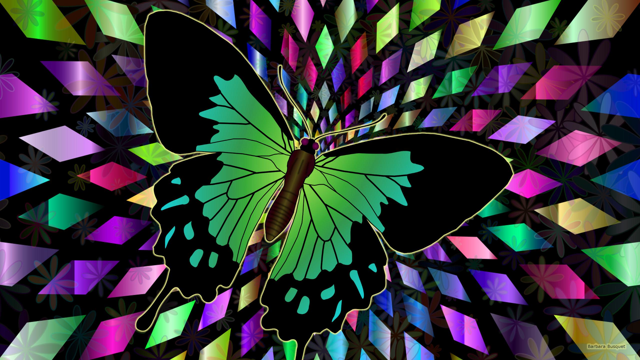 Butterfly Wallpaper Rainbow Butterfly Wallpaper Hd: Barbaras HD Wallpapers