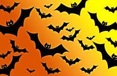 Halloween pattern wallpapers