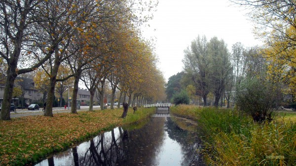 Dutch landscape canal and bridge in autumn