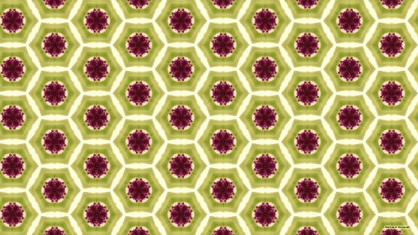 Green purple hexagon pattern wallpaper