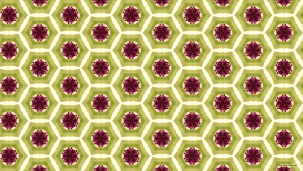 Green purple hexagon pattern wallpaper