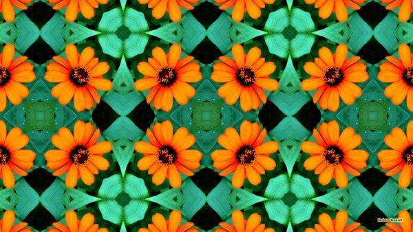 Wallpaper orange flower pattern