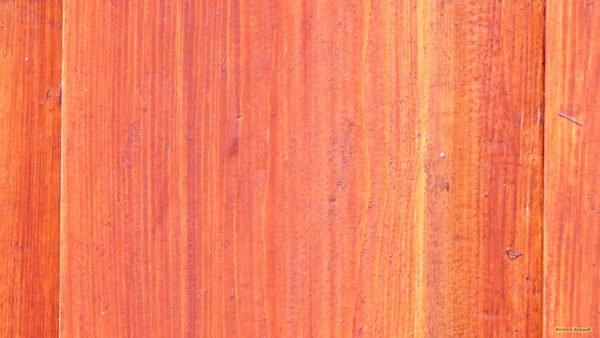 Red wood pattern wallpaper
