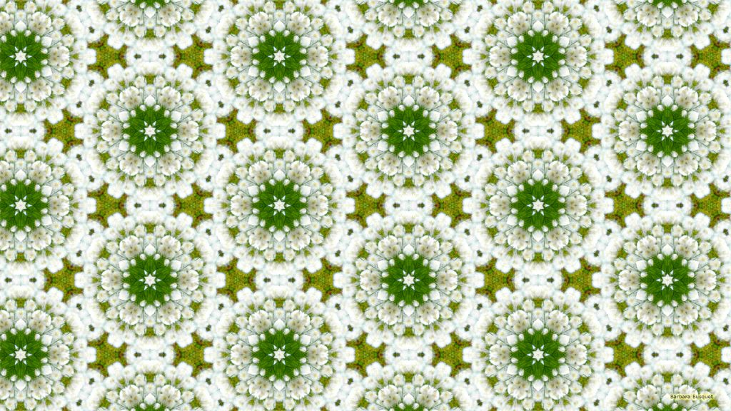 White flowers pattern wallpaper