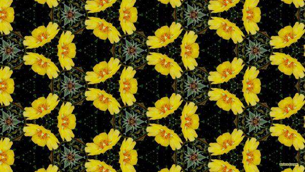 yellow flowers pattern