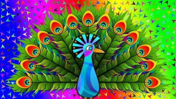 Colorfull peacock wallpaper