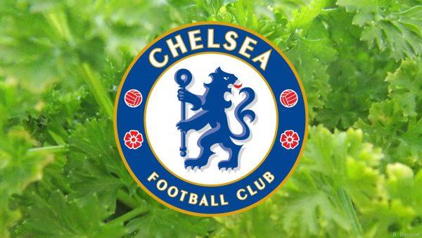 Green Chelsea football club wallpaper