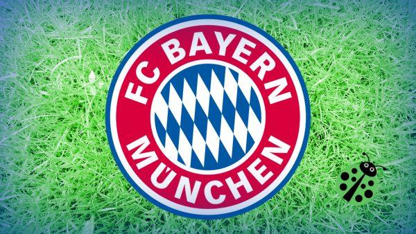 Green FC Bayern Munchen wallpaper