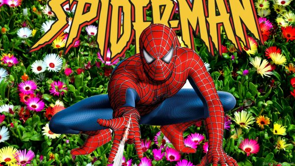 HD wallpaper Spiderman making web