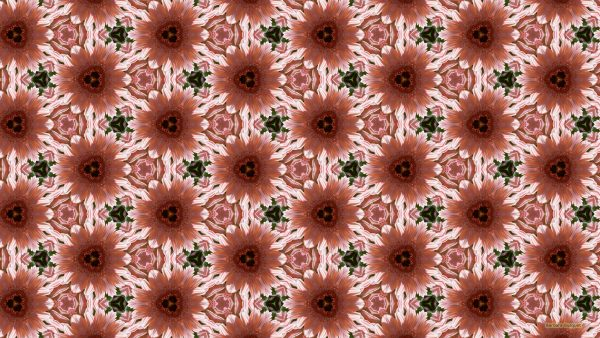 Light pink flower pattern wallpaper