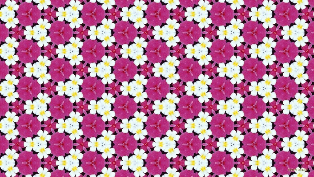Beautiful pattern wallpaper white and pink flowers.