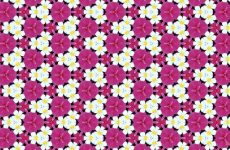 White and pink flower pattern
