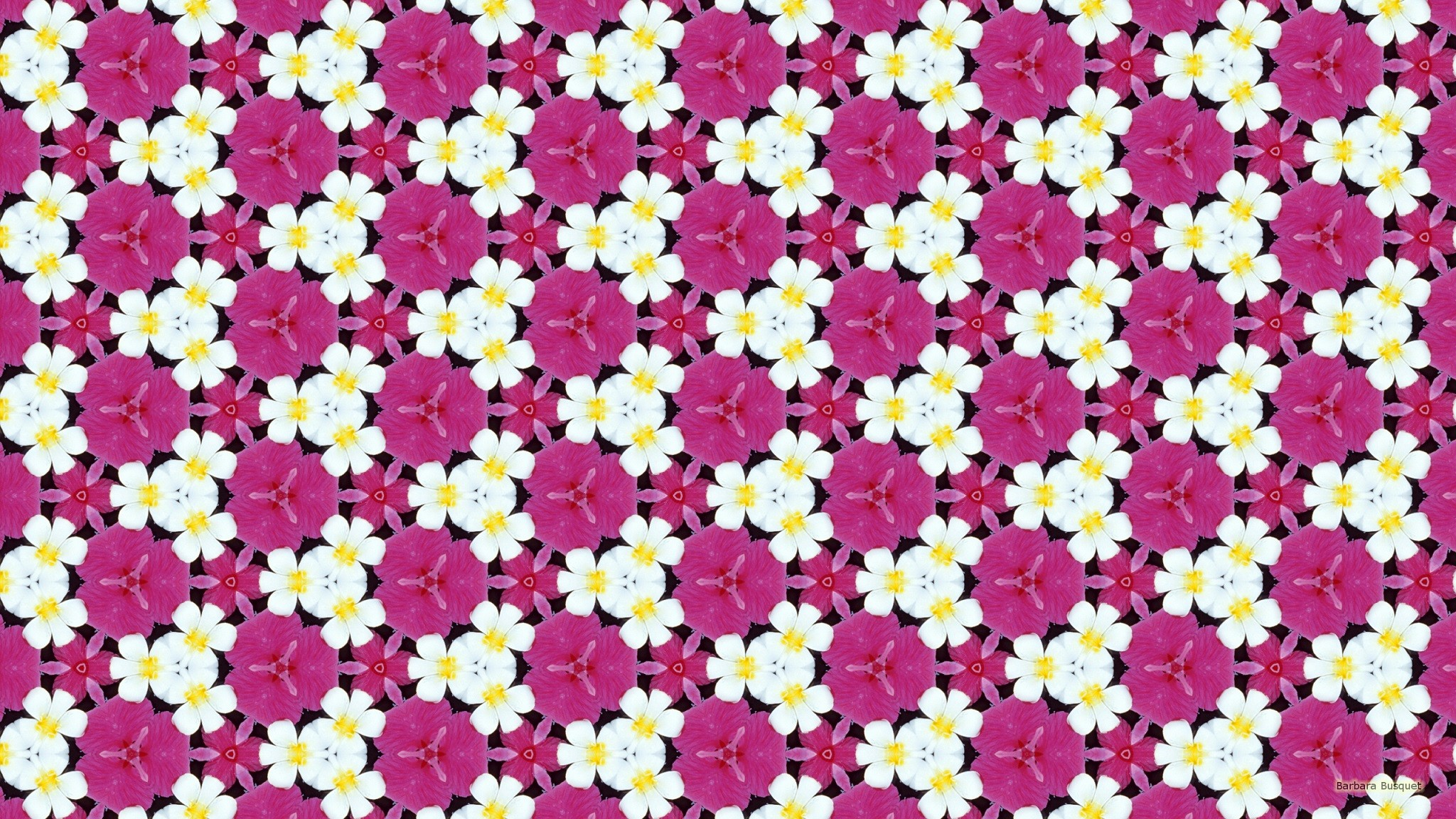 White And Pink Flower Pattern Barbaras Hd Wallpapers
