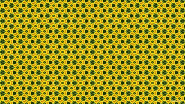 Pattern wallpaper with yellow flowers.