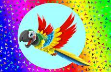 Colorful wallpaper with parrot