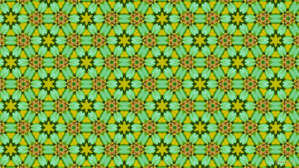 Hexagon wallpaper with green leaves