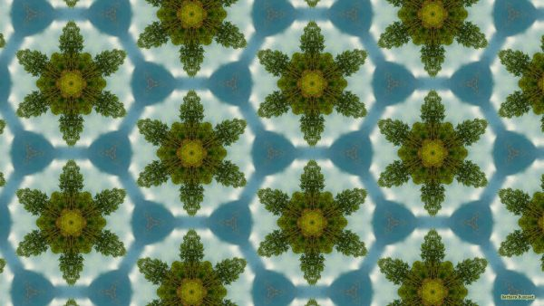 Abstract pattern wallpaper with trees